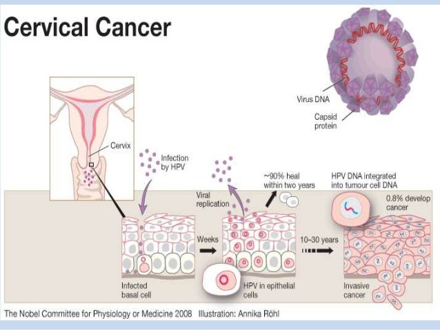 cervical cancer and drug interactions Drug interactions with newer oral chemotherapy many potential ddis exist with newer oral chemotherapy agents for drug interactions in hospitalized cancer.