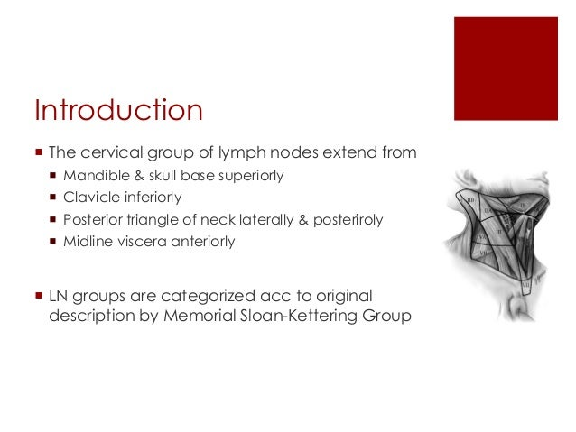 Introduction  The cervical group of lymph nodes extend from  Mandible & skull base superiorly  Clavicle inferiorly  Po...