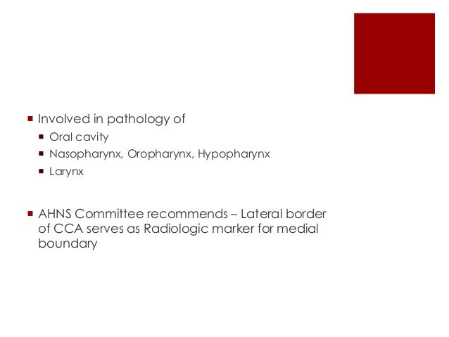  Involved in pathology of  Nasopharynx  Oropharynx  Cutaneous structures of posterior scalp  Neck
