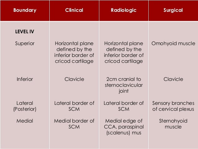 LEVEL VII  Contains Superior Mediastinal group of LN's  The LN are an extension of the paratracheal LN chain extending i...