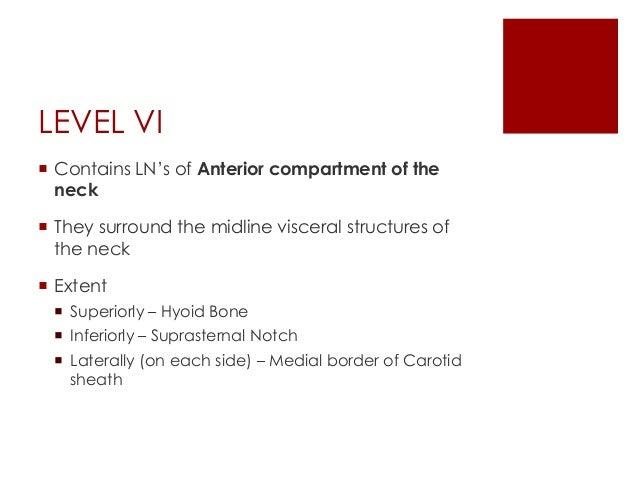 Cervical lymph nodes