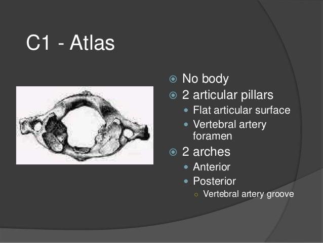 Cervical spine fractures muhamma