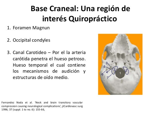 Manipulación Cervical Superior 2012 Slide 2