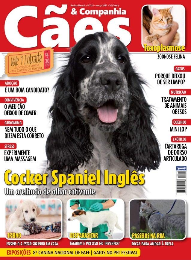Revista Mensal – Nº 214 – março 2015 – 3€ (Cont.) Um orelhudo de olhar cativante É Um bom candidato? adoção nem tUdo o qUe...