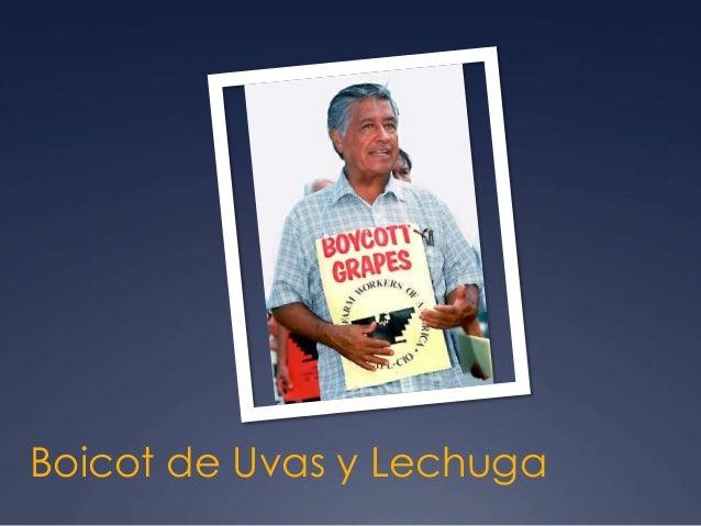 Boicot de Uvas y Lechuga