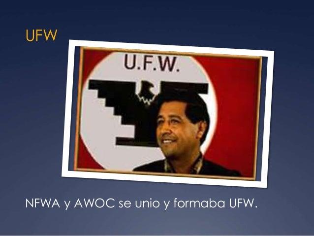 UFW NFWA y AWOC se unio y formaba UFW.