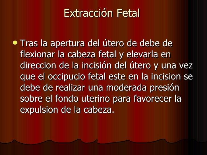 Extracción Fetal  <ul><li>Tras la apertura del útero de debe de flexionar la cabeza fetal y elevarla en direccion de la in...