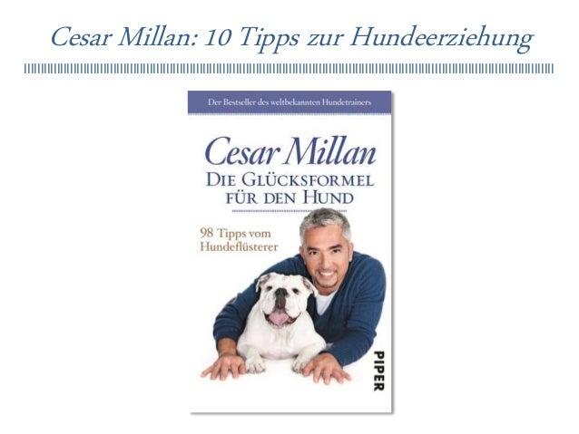 Cesar Millan: 10 Tipps zur Hundeerziehung llllllllllllllllllllllllllllllllllllllllllllllllllllllllllllllllllllllllllllllll...