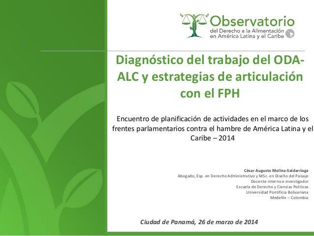 Diagnóstico del trabajo del ODA- ALC y estrategias de articulación con el FPH Encuentro de planificación de actividades en...