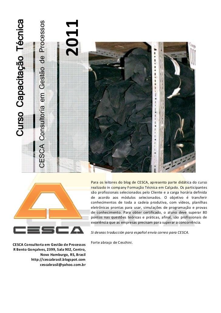 2011Curso Capacitação Técnica                            CESCA Consultoria em Gestão de Processos                        ...