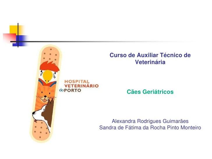 Curso de Auxiliar Técnico de VeterináriaCães GeriátricosAlexandra Rodrigues GuimarãesSandra de Fátima da Rocha Pinto Monte...