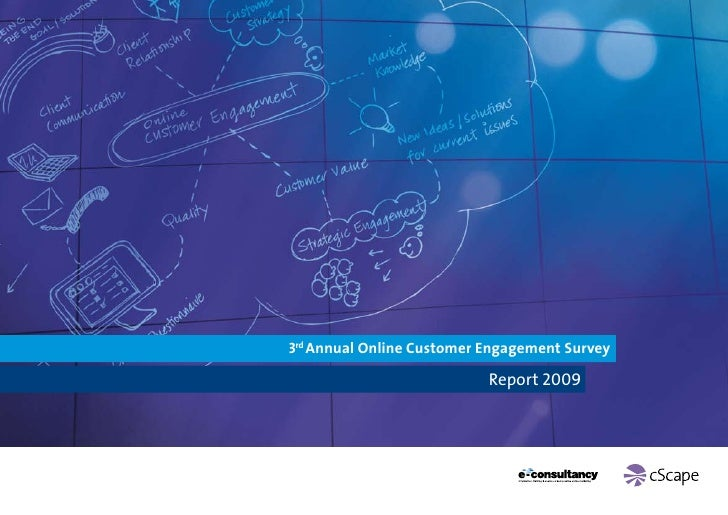 3rd Annual Online Customer Engagement Survey                             Report 2009