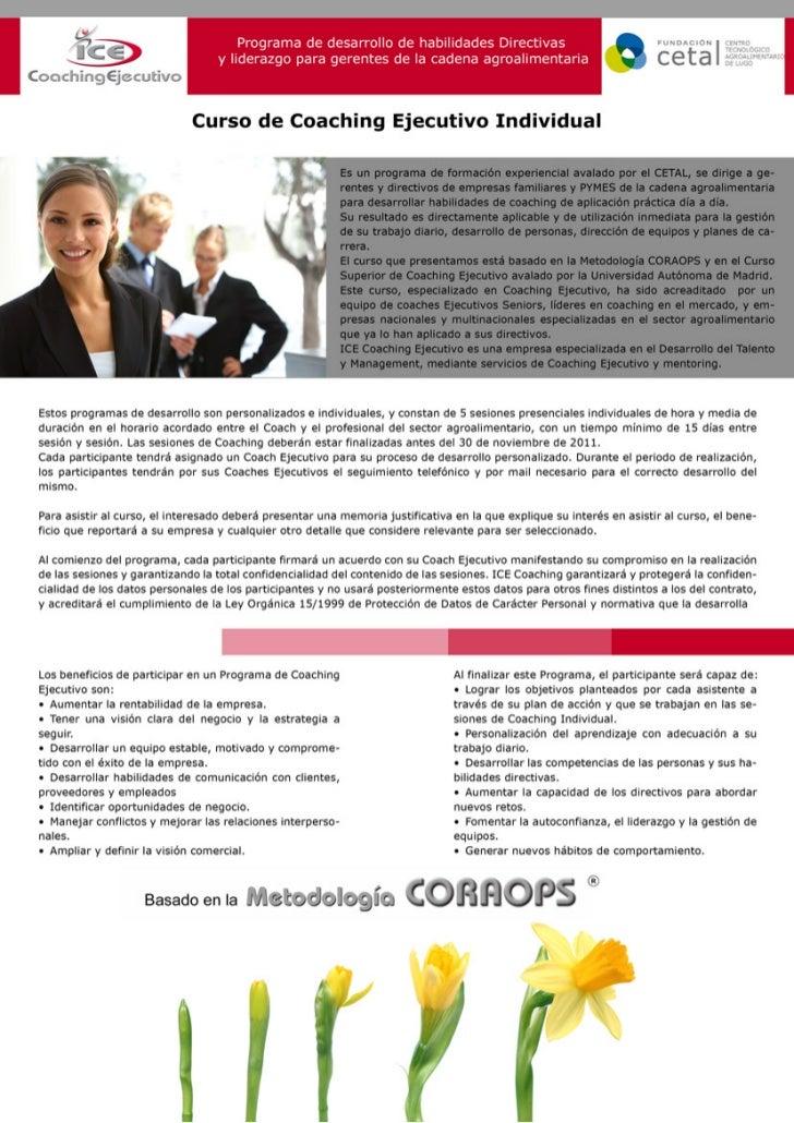Proceso individual de Coaching Ejecutivo Slide 3