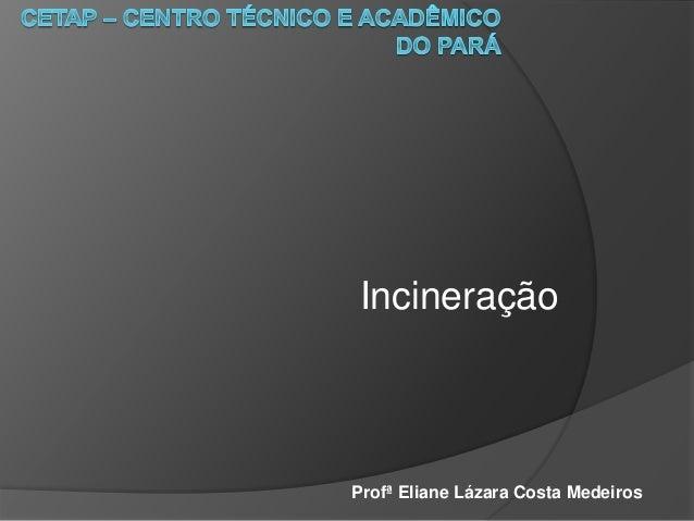 Incineração Profª Eliane Lázara Costa Medeiros