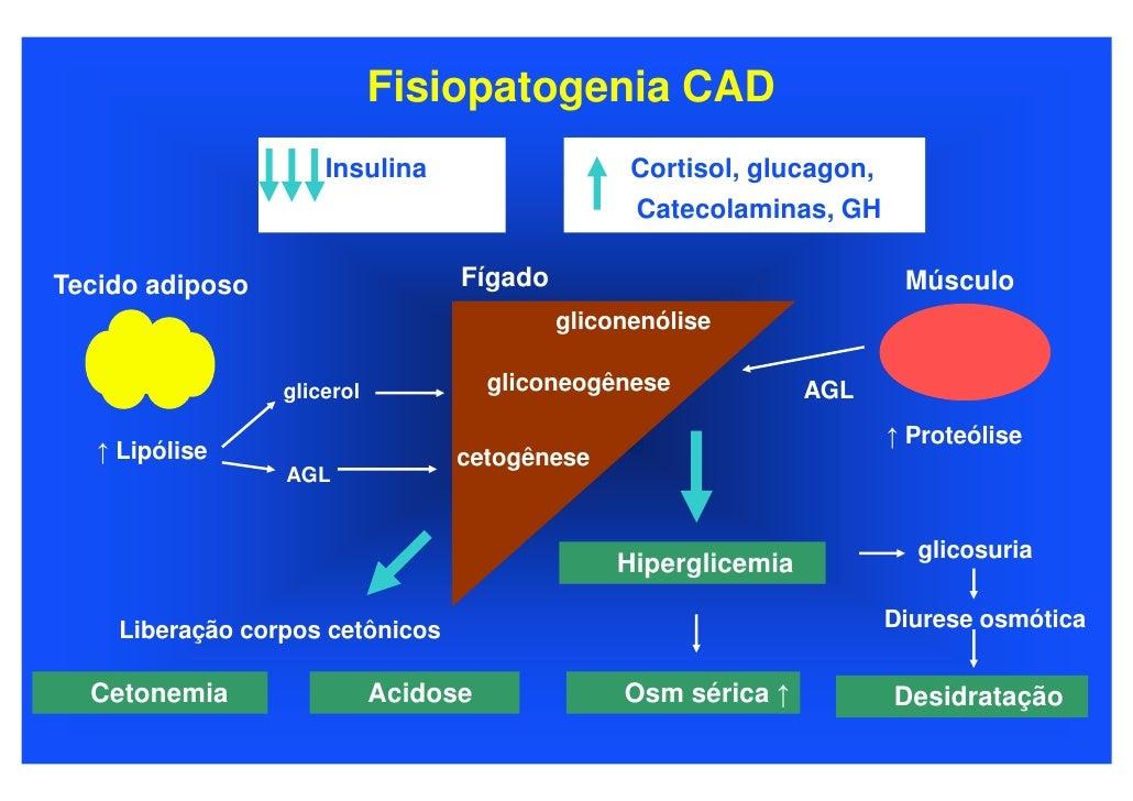 Fisiopatogenia CAD                       Insulina                    Cortisol, glucagon,                                  ...