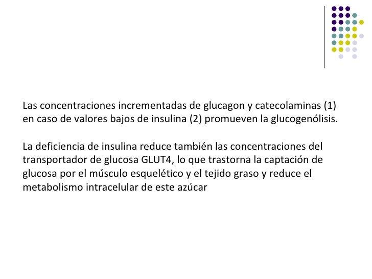 Las concentraciones incrementadas de glucagon y catecolaminas (1)en caso de valores bajos de insulina (2) promueven la glu...