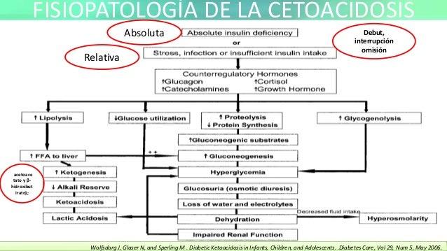 Cetoacidosis diabetica fisiopatologia pdf