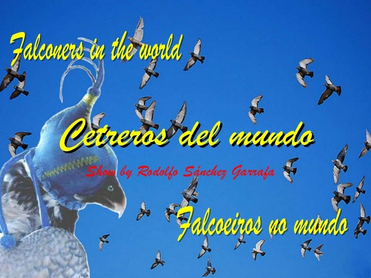 Cetreros del mundo Show by Rodolfo Sánchez Garrafa Falconers in the world Falcoeiros no mundo