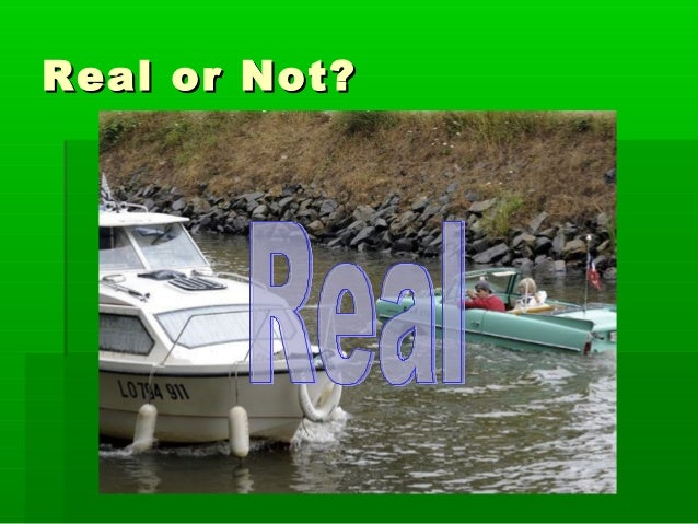 Real or Not?Real or Not?