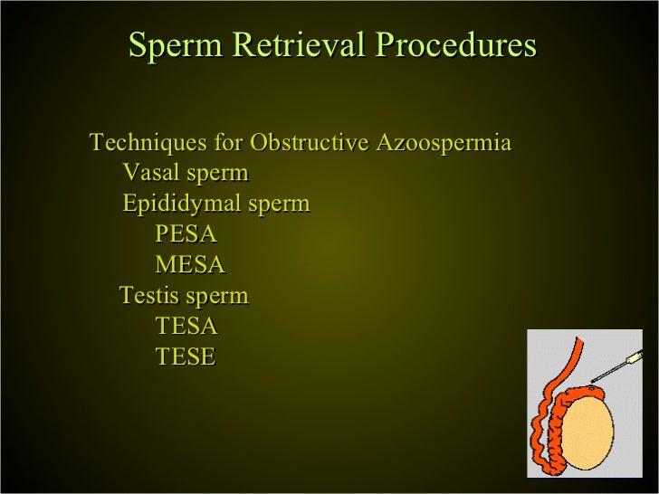Fibrosis in sperm