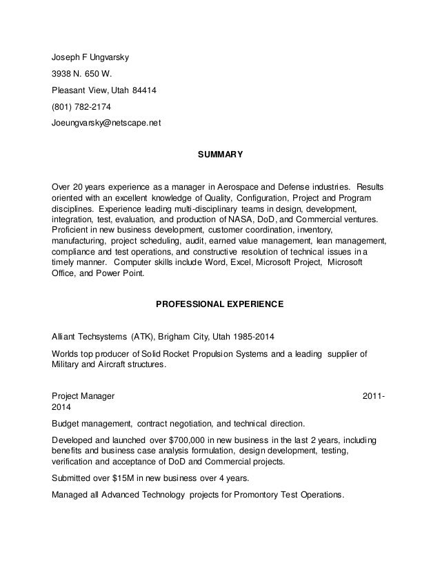 Program Manager Resume 4