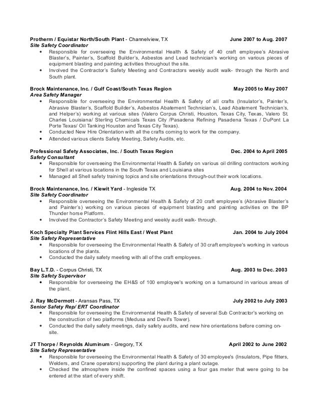 3 - Safety Professional Resume