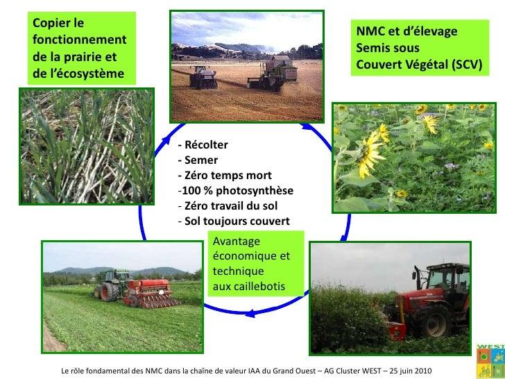 274 500 travailleurs</li></ul>L'agriculture : les faiblesses<br /><ul><li> La pollution de l'eau (nitrates, phosphore, ph...