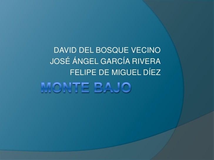 MONTE BAJO<br />DAVID DEL BOSQUE VECINO<br />JOSÉ ÁNGEL GARCÍA RIVERA<br />FELIPE DE MIGUEL DÍEZ<br />