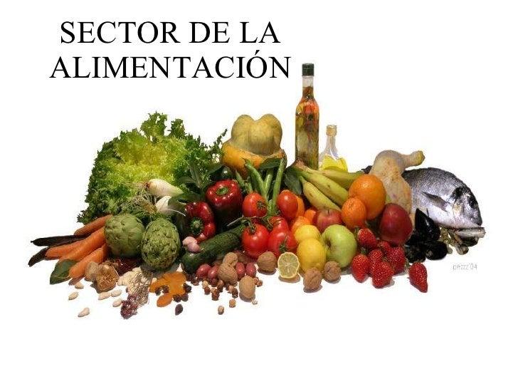 SECTOR DE LA ALIMENTACIÓN