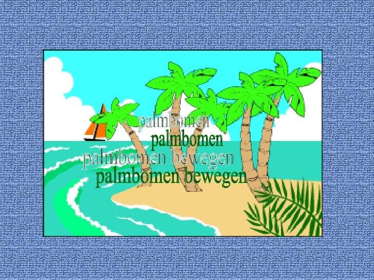 palmbomen palmbomen bewegen