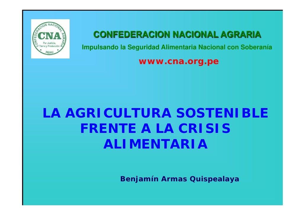 CONFEDERACION NACIONAL AGRARIA     Impulsando la Seguridad Alimentaria Nacional con Soberanía                       www.cn...