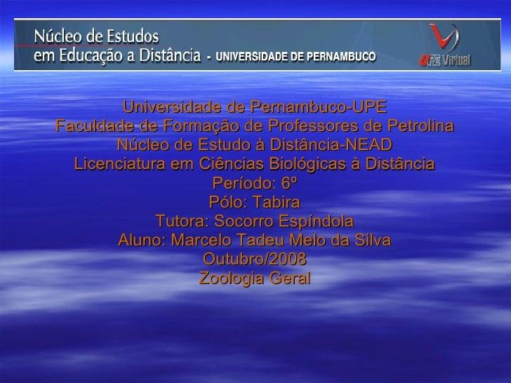 Universidade de Pernambuco-UPE Faculdade de Formação de Professores de Petrolina Núcleo de Estudo à Distância-NEAD Licenci...