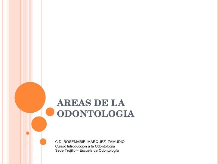 AREAS DE LA ODONTOLOGIA C.D. ROSEMARIE  MARQUEZ  ZAMUDIO Curso: Introducción a la Odontología Sede Trujillo – Escuela de O...