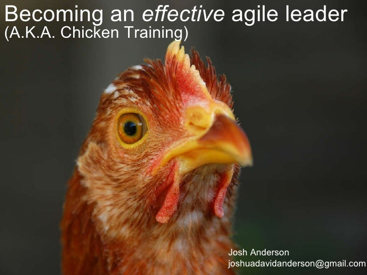 Becoming an  effective  agile leader (A.K.A. Chicken Training) Josh Anderson [email_address]