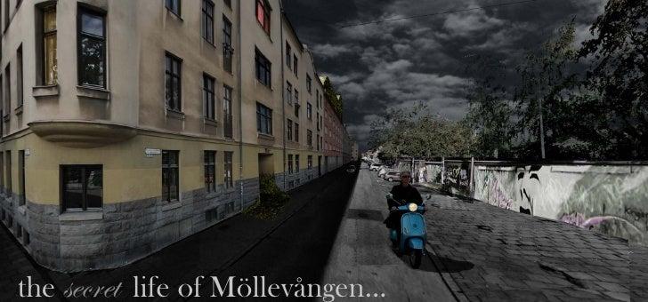 the secret life of Möllevången...