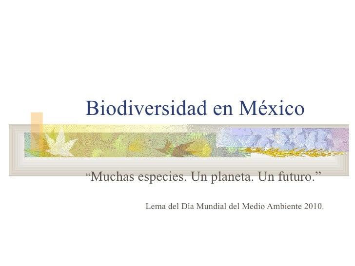 """Biodiversidad en México """" Muchas especies. Un planeta. Un futuro."""" Lema del Día Mundial del Medio Ambiente 2010."""