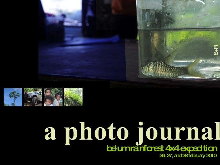 belum rainforest 4x4 expedition a photo journal S+R photography 26, 27, and 28 february 2010