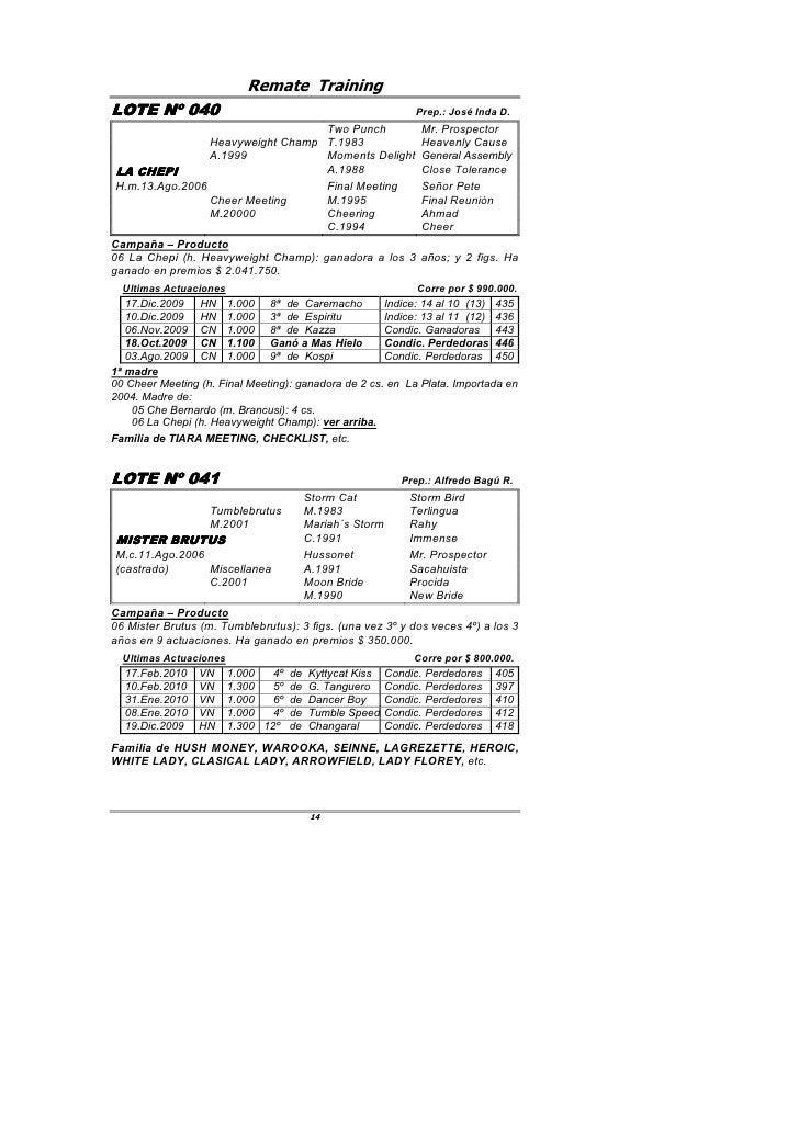 Remate Training LOTE Nº 040         040                                                    Prep.: José Inda D.            ...