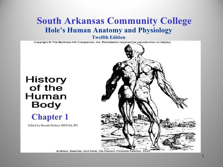 Chapter 1 Edited by Brenda Holmes MSN/Ed, RN South Arkansas Community College Hole's Human Anatomy and Physiology Twelfth ...