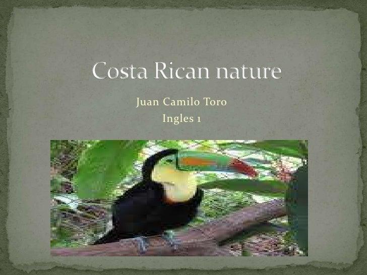 Costa Ricannature<br />Juan Camilo Toro<br />Ingles 1<br />