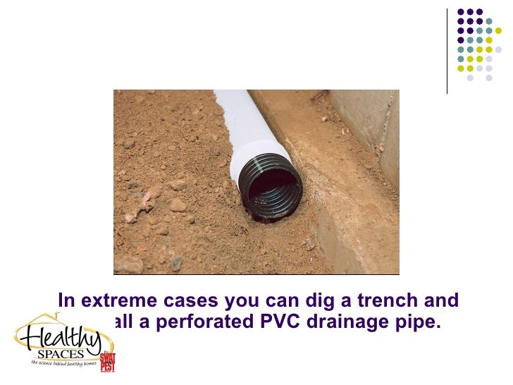 Healthy Space Crawlspace Fix To Damp Wet Moldy And