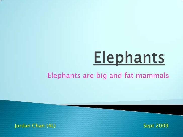 Elephants<br />Elephants are big and fat mammals<br />Jordan Chan (4L)             		                       Sept 2009<br />