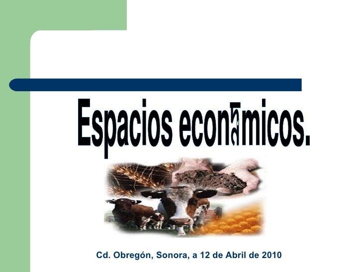 Espacios económicos.  Cd. Obregón, Sonora, a 12 de Abril de 2010