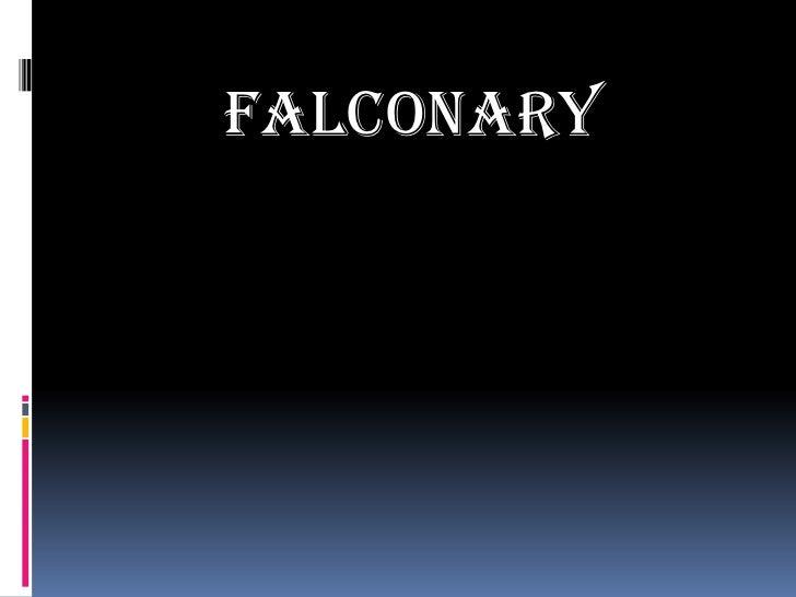 FALCONARY<br />