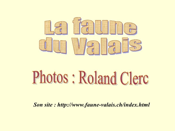 La faune  du Valais Photos : Roland Clerc Son site : http://www.faune-valais.ch/index.html