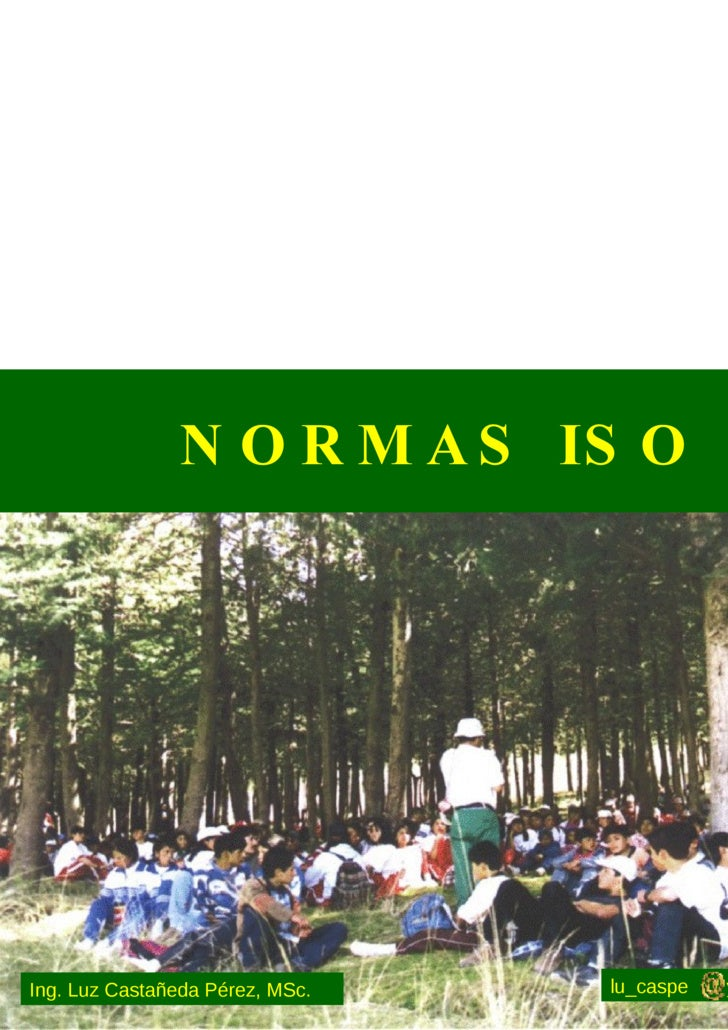 NORMAS ISO lu_caspe  yahoo.com Ing. Luz Castañeda Pérez, MSc.
