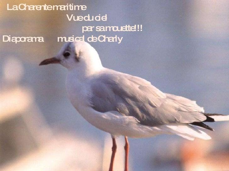 La Charente maritime  Vue du ciel  par sa mouette!!! Diaporama  musical de Charly