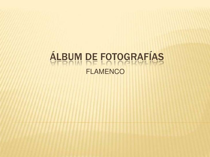 Álbum de fotografías<br />FLAMENCO<br />