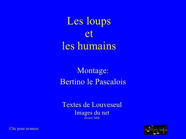 Les loups et les humains Montage: Bertino le Pascalois Textes de Louveseul Images du net février 2008 Clic pour avancer