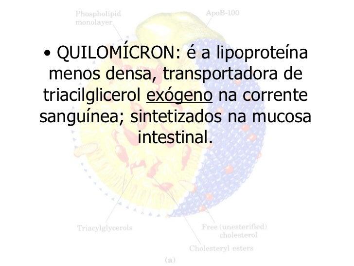 <ul><li>QUILOMÍCRON: é a lipoproteína menos densa, transportadora de triacilglicerol  exógeno  na corrente sanguínea; sint...
